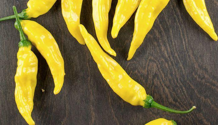 Горький перец Венгерский желтый фото