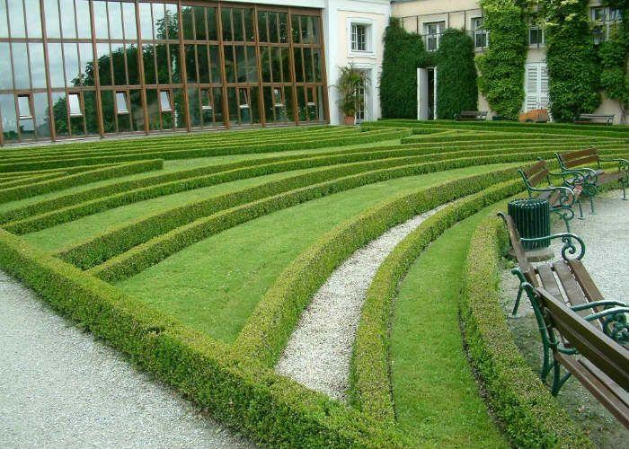 Зеленая бордюрная изгородь фото