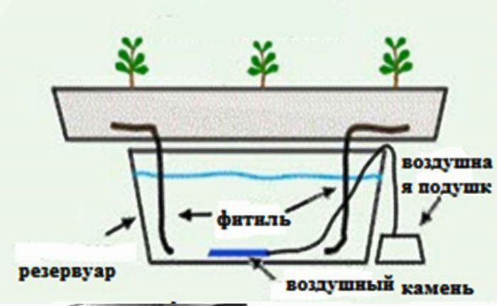 Гидропоника Система с фитилем фото