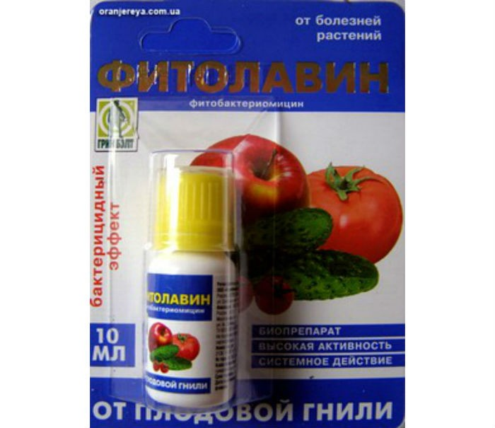 Фитолавин-300 фото