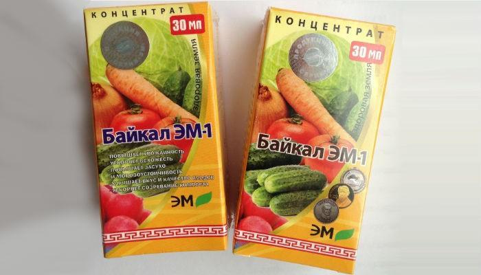 Байкал ЭМ-1 фото