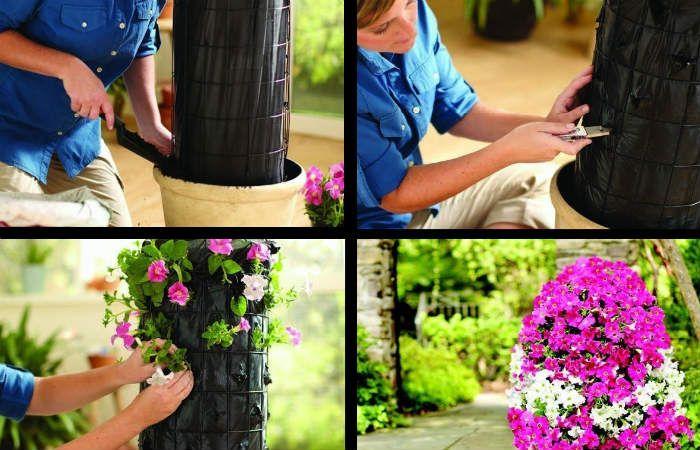 Высаживаем цветы фото