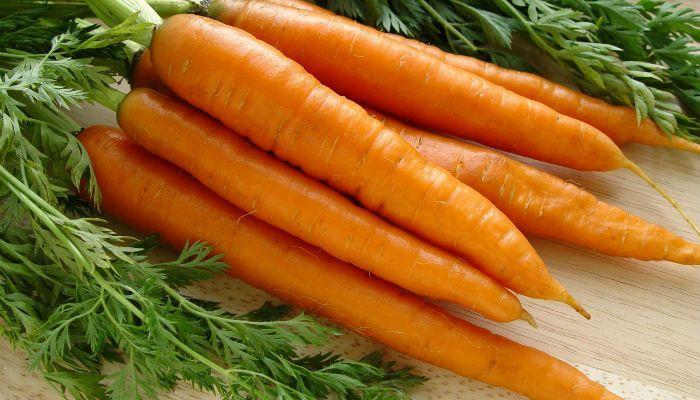 Морковь Ласуня фото