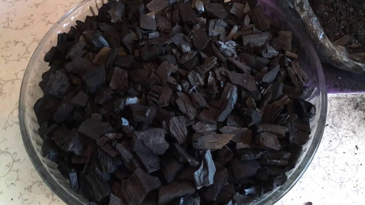 Древесный уголь – применение в саду и на огороде