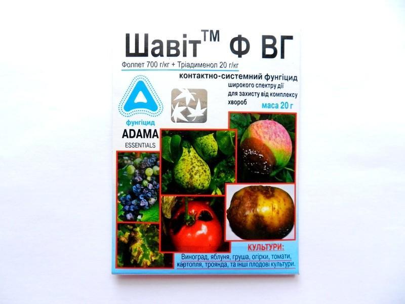 Фунгицид Шавит является средством, защищающим виноград, фруктовое дерево, огурец, томат от грибкового заболевания. На протяжении короткого периода Шавит вылечивает культуры от гнили, парши, мучнистой росы. Достаточно использовать несколько обработок для искоренения заболевания.  Характеристика В Фунгициде Шавите находятся активно действующие компоненты - фолпеты фталимиды, триадминолы и триазолы. Благодаря активному взаимодействию компонентов, можно успешно лечить культуры, которые заражены грибками. Действующие вещества оказывают разное влияние. Фолпет, когда попадает на растение, нарушает клеточное деление возбудителей, мешает его продвижению по культуре. Вторым веществом является триадименол. Он изменяет мембранные грибные функции. Это приводит к клеточному разрушению. Шавит выпускается в виде водорастворимой гранулы или порошка. Он фасуется в полиэтиленовые килограммовые пакеты.   Время воздействия Фунгицид Шавит действует активно спустя 15 дней после нанесения на обрабатываемую поверхность. Нанесение компонента зависит от погодных условий. Работает вещество активно, вне зависимости от температуры, вида чернозема и нормы влажности. Оно не способно навредить культуре. Одни из некоторых ранних растительных сортов увядает. Действующее вещество не влияет на новые посадки. Препарат применяется, если культура не появляется. Фунгицид Шавит считается эффективным веществом, которое хорошо борется с разным типом вредителей.  Преимущества Преимуществом Шавита является исключение возможности появления резистентности, эффективное влияние на грибковые заболевания на определенные культурные растения, использование в профилактике, терапии, полном искоренении микоза. Препарат считается быстродействующим компонентом. Он защищает растения в течение двух недель. Не относится к токсичному компоненту.   Недостатки Недостаток компонента состоит в том, что он опасен для окружающей среды. Оно отличается токсичностью для человека, животного и медоносного насекомого.  Инструкция по примен
