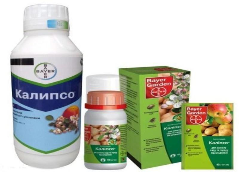 Инсектицид Калипсо - описание и инструкция