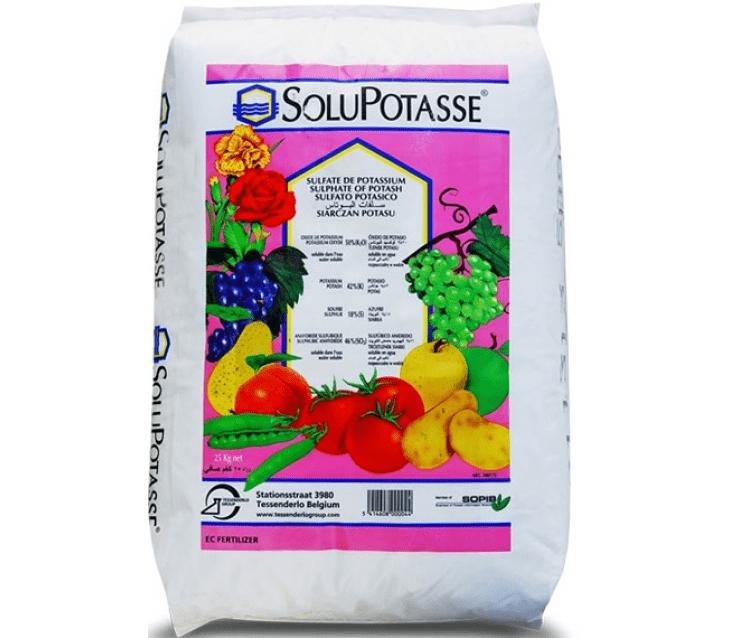 Солюпотасс стимулирует вызревание ягод